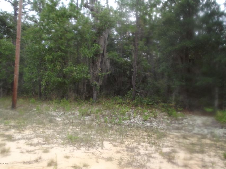 0 David, INTERLACHEN, FLORIDA 32148, ,Vacant land,For sale,David,944191