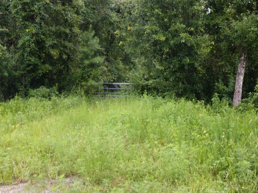 3260 STATE ROAD 21- MIDDLEBURG- FLORIDA 32068, ,Vacant land,For sale,STATE ROAD 21,942378
