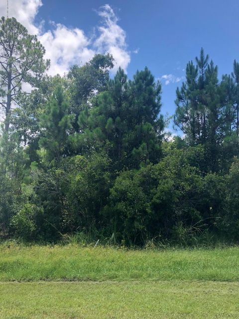 5608 LONG MARSH, ELKTON, FLORIDA 32033, ,Vacant land,For sale,LONG MARSH,945905