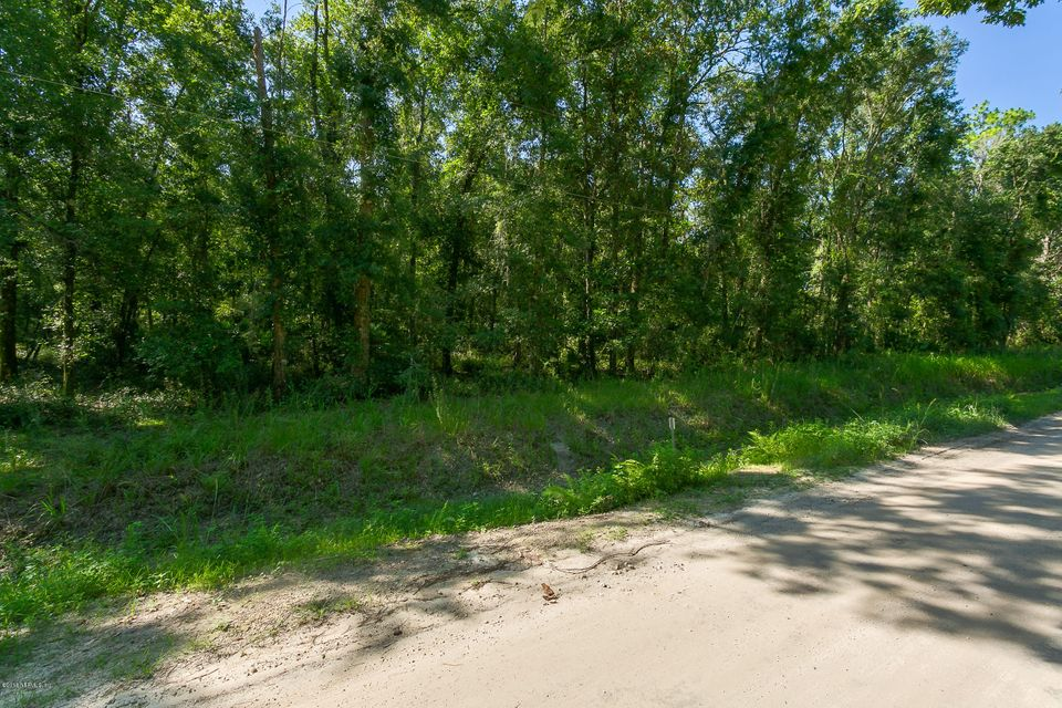 WATKINS, GREEN COVE SPRINGS, FLORIDA 32043, ,Vacant land,For sale,WATKINS,925371