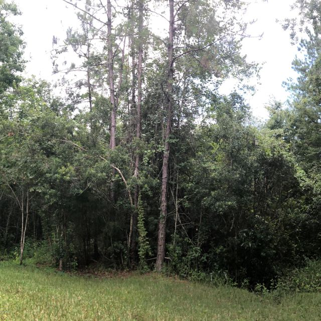 000 WOODLAWN- STARKE- FLORIDA 32091, ,Vacant land,For sale,WOODLAWN,946867