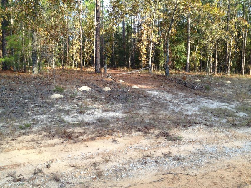 177 HILL TOP, HAWTHORNE, FLORIDA 32640, ,Vacant land,For sale,HILL TOP,947426