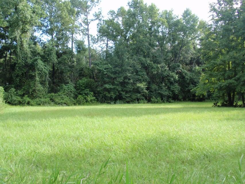 00 ORANGE, WELAKA, FLORIDA 32193, ,Vacant land,For sale,ORANGE,952353
