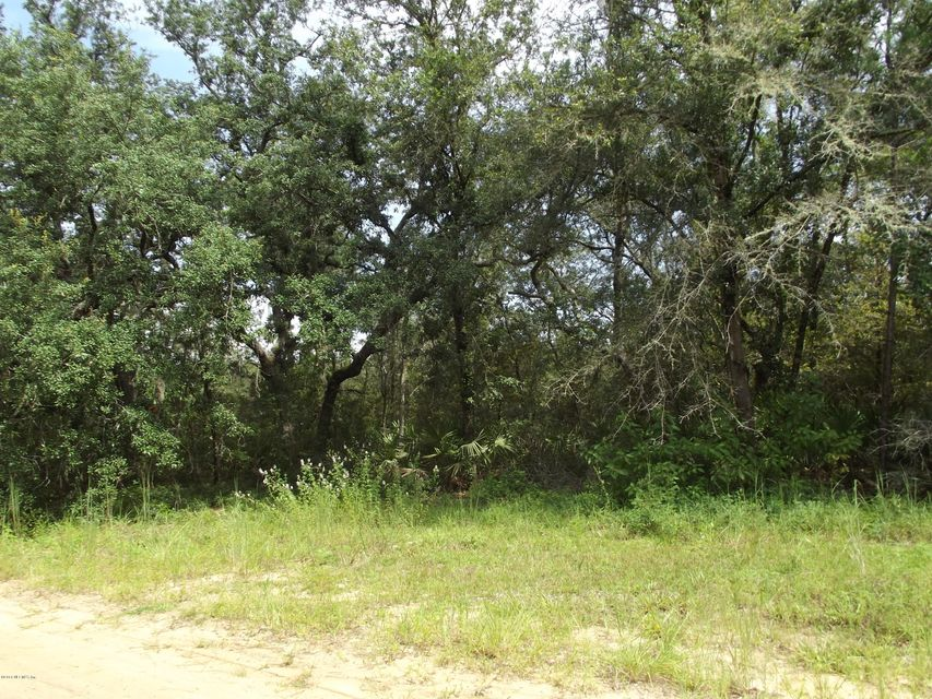 130 BREAM, INTERLACHEN, FLORIDA 32148, ,Vacant land,For sale,BREAM,952523
