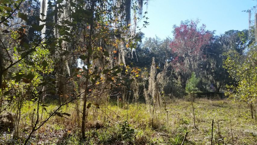 vacant-land |  9508 COUNTY ROAD 13 North