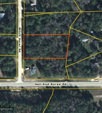 2891 WITCH HAZEL RD, MIDDLEBURG, FL 32068