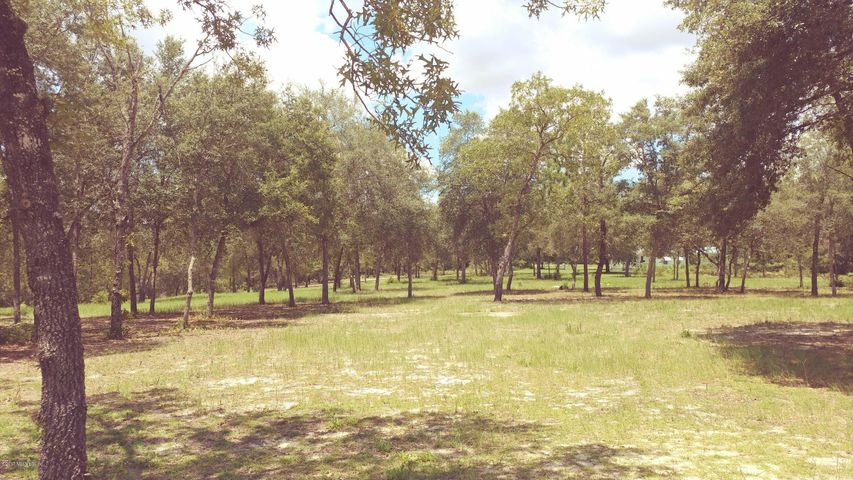 vacant-land |  7662 OAK FOREST RD