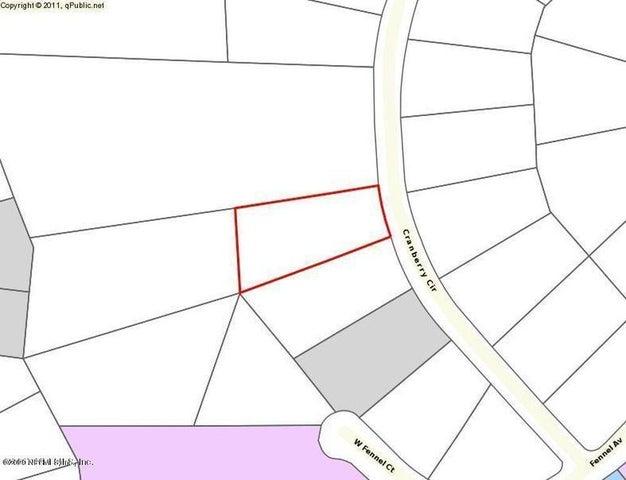 2870 CRANBERRY CIR, MIDDLEBURG, FL 32068