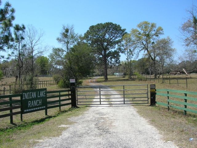 Indian Lake Ranch -Private, Premier, Surreal and Breathtaking are a few adjectives that describe the land on the ranch.  There are two houses that overlook the 30 acre lake, an enormous hay barn, office, and smaller pole barn. The ranch is completely fenced and cross fenced, is a combination of lush hay fields, planted pine, live and  red oaks that are hundreds of years old and natural forest. Looks like old south plantation land. The native forest provides a perfect habitat for the vast amount of wildlife seen on the property. Ideal location and for one looking for a superior cattle ranch, horse farm and beautiful home-sites.  The current zoning has DEVELOPMENT potential allowing 2 units per acre for most of the property. (A-503)