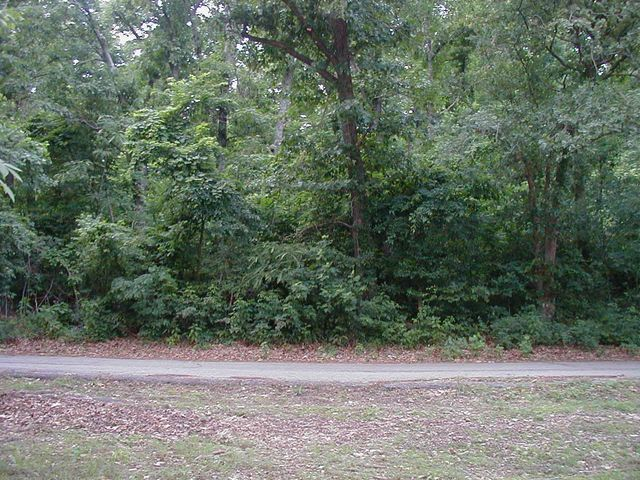 Front view of the lot from the RV park.