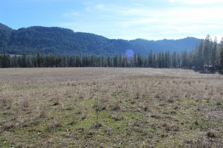 2034 RAY ANDERSON RD, KETTLE FALLS, WA 99141