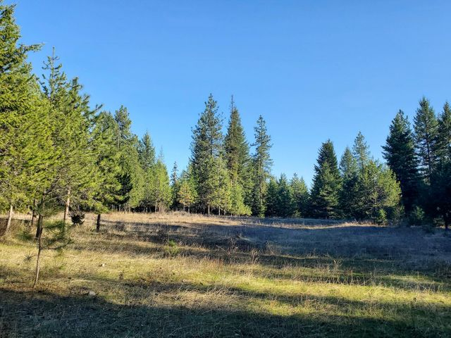 TBD E. JUMP OFF JOE RD, (116 ACRE), VALLEY, WA 99181