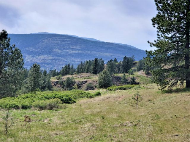 1237 GOLD EDGE MINE RD, LOT P, KETTLE FALLS, WA 99141