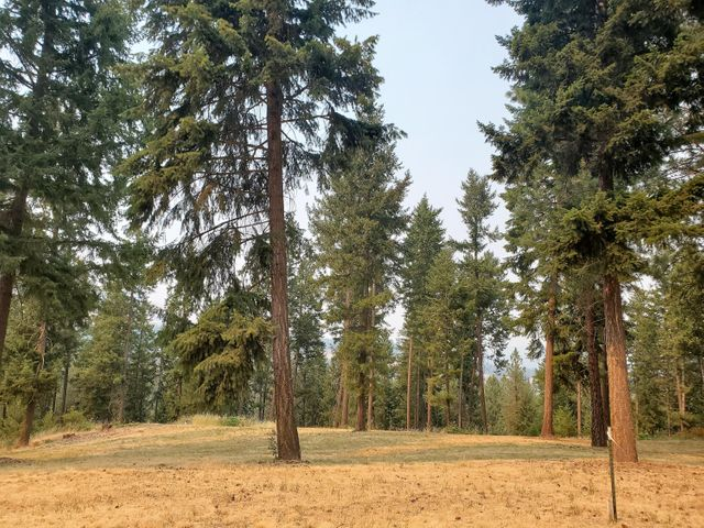 LOT C MARCUS CAMPGROUND RD, MARCUS, WA 99151