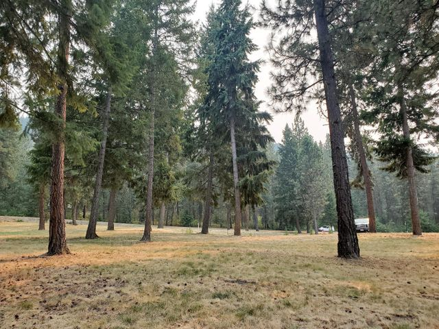 TBD MARCUS CAMPGROUND RD, LOT D, MARCUS, WA 99151