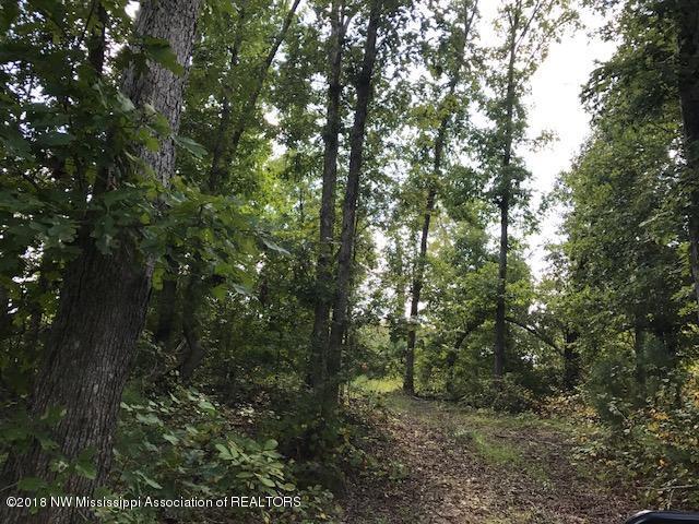 68 Tall Pines Ashland, MS 38603 - MLS #: 314570