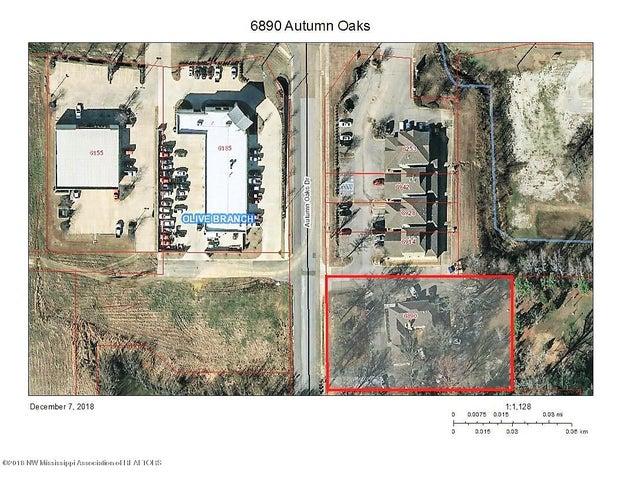 6890 Autumn Oaks Drive