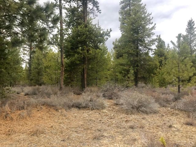 5 - Lot Gracies Road, Gilchrist, OR 97737