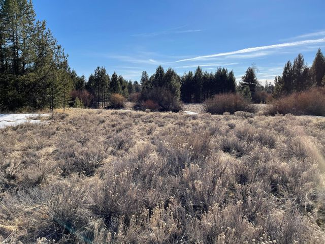 Large 1.67 acre lot, nice meadow wood stand of pines near the river and golf course. Rare opportunity, could be combined with adjacent lots.