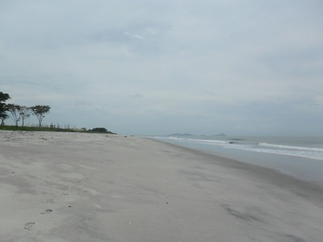 Apartamento Panama>Chame>Gorgona - Venta:472.042 US Dollar - codigo: 14-1061