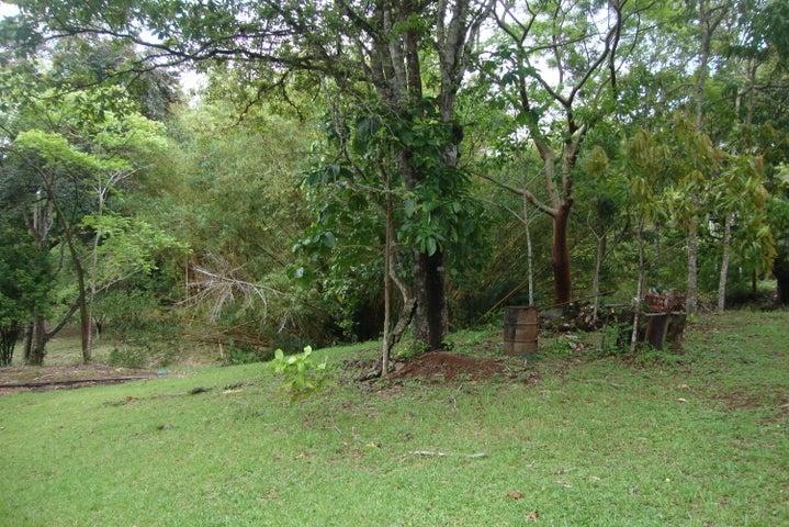 Terreno Panama>Panama Oeste>Capira - Venta:1.750.000 US Dollar - codigo: 15-952