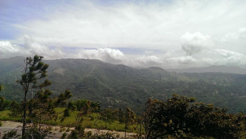 Terreno Panama>Chame>Sora - Venta:65.000 US Dollar - codigo: 15-1441