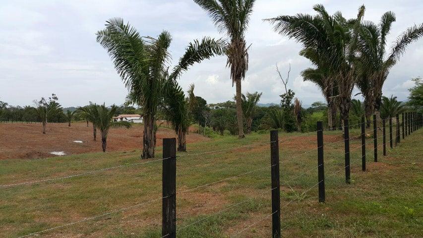 Terreno Panama>San Carlos>San Carlos - Venta:57.588 US Dollar - codigo: 15-1689