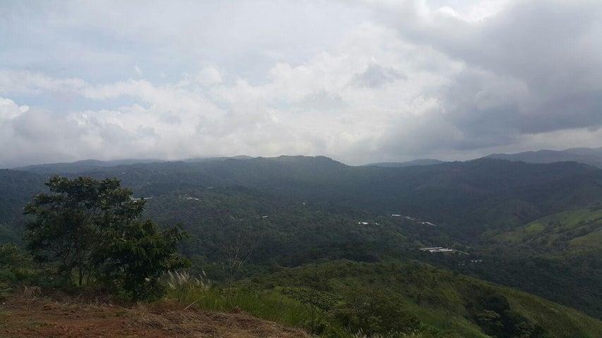 Terreno Panama>Pacora>Cerro Azul - Venta:35.000 US Dollar - codigo: 15-2337