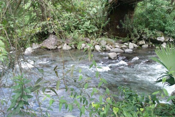 Terreno Chiriqui>Chiriqui>Chiriqui - Venta:3.000.000 US Dollar - codigo: 15-2665
