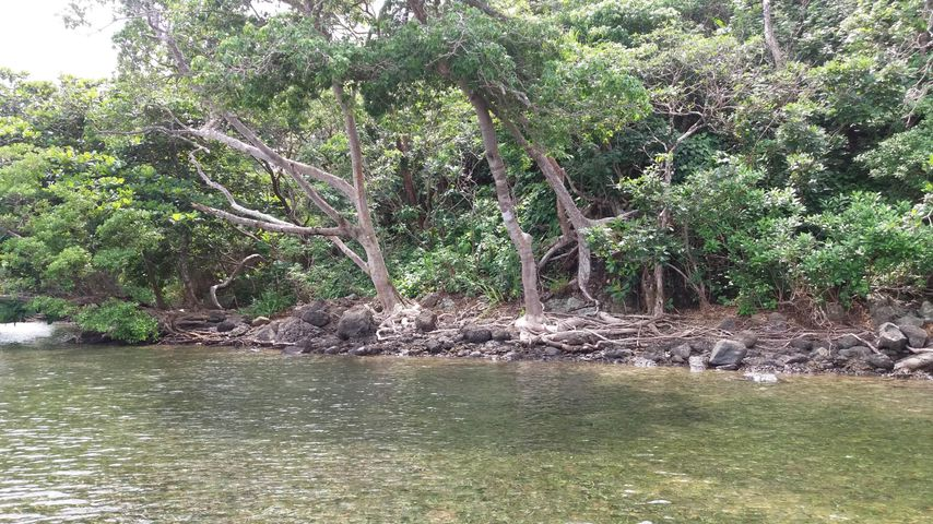Terreno Colon>Portobelo>Garote - Venta:6.000.000 US Dollar - codigo: 15-2746
