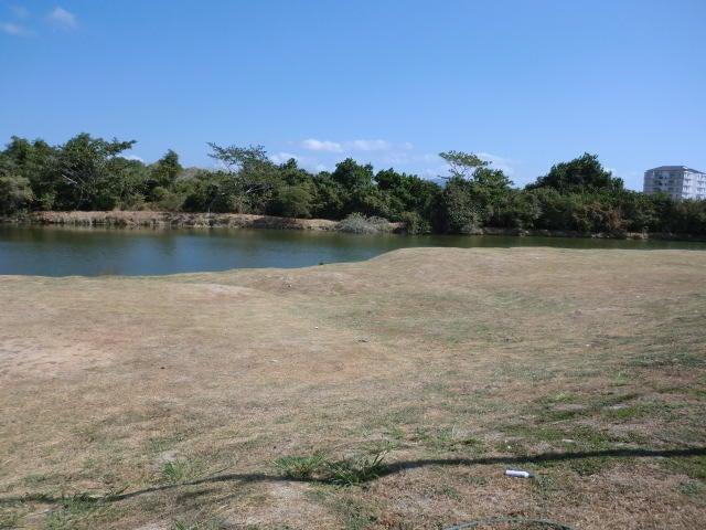 Terreno Panama>Chame>Coronado - Venta:135.000 US Dollar - codigo: 16-150