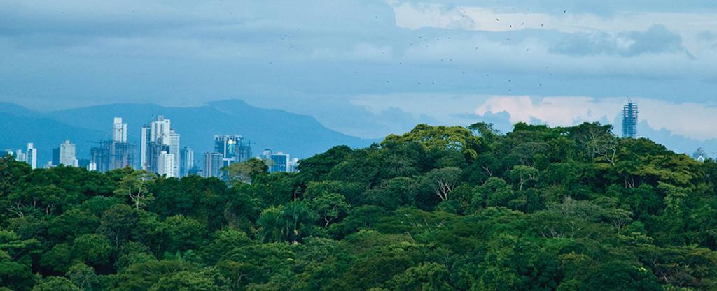 Apartamento Panama>Panama>Panama Pacifico - Venta:227.995 US Dollar - codigo: 16-1581