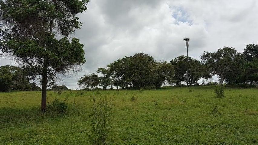 Terreno Panama>San Carlos>San Carlos - Venta:1.100.000 US Dollar - codigo: 16-1982