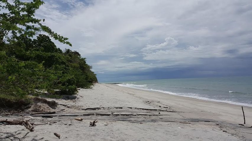 Terreno Panama>San Carlos>San Carlos - Venta:17.569.663 US Dollar - codigo: 16-2192