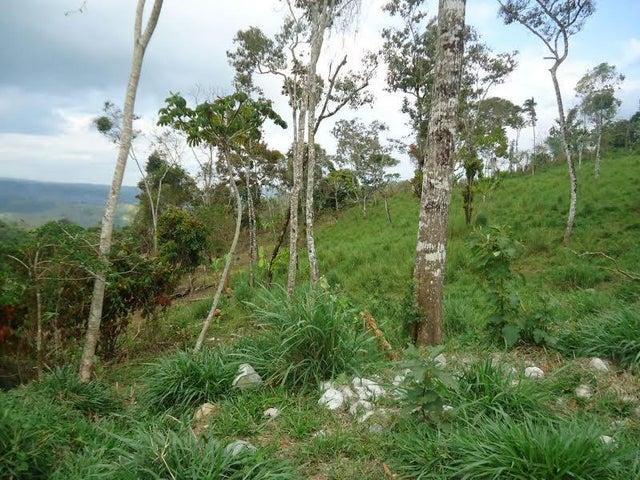 Terreno Chiriqui>Chiriqui>Chiriqui - Venta:235.000 US Dollar - codigo: 16-3970