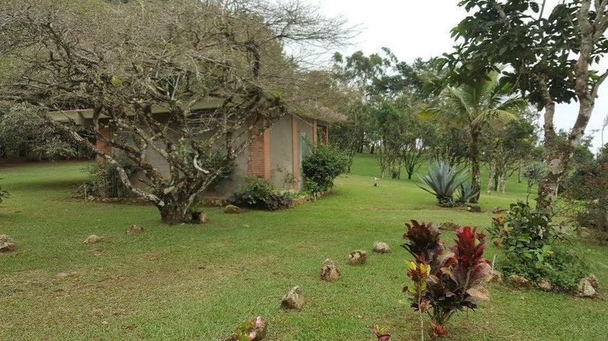 Terreno Panama>Panama>Tocumen - Venta:497.000 US Dollar - codigo: 16-4318