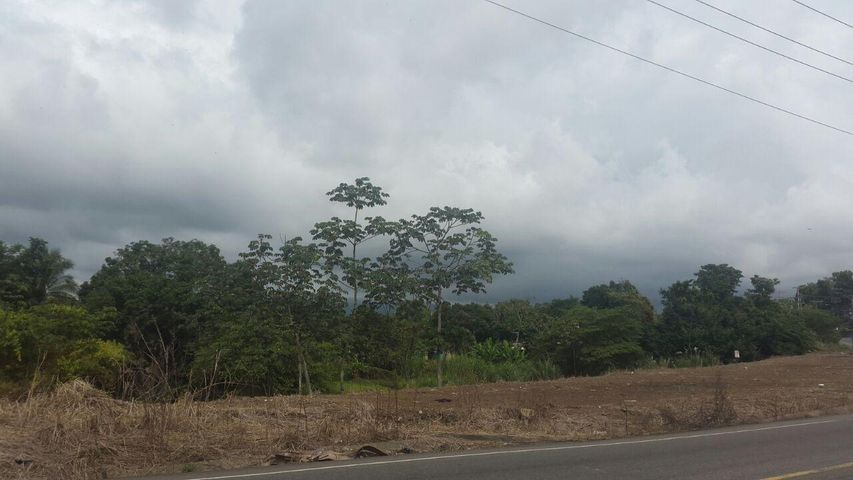 Terreno Panama>Panama>Las Mananitas - Venta:500.000 US Dollar - codigo: 16-4984