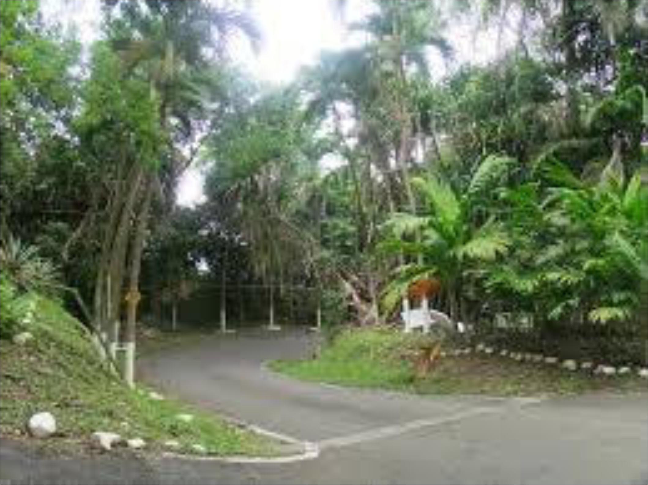Terreno Panama>Panama>Ancon - Venta:275.000 US Dollar - codigo: 16-219