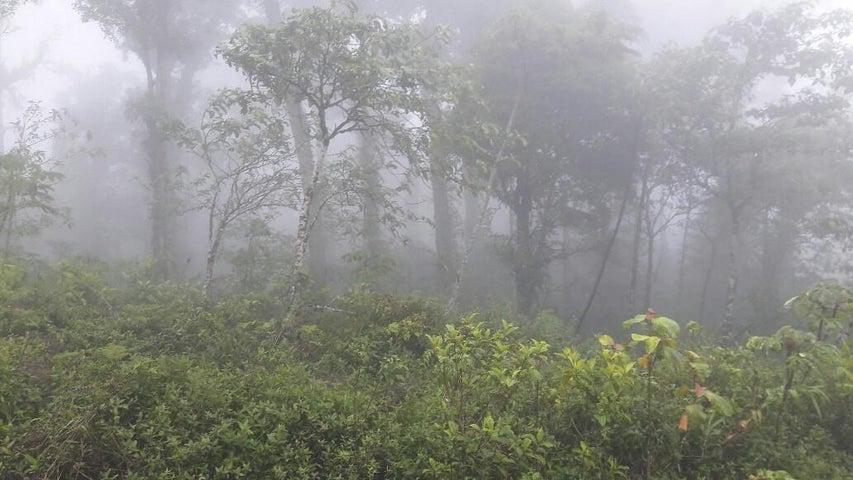 Terreno Panama>Chame>Sora - Venta:150.000 US Dollar - codigo: 17-2068