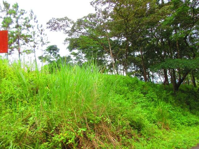 Terreno Panama>Pacora>Cerro Azul - Venta:450.000 US Dollar - codigo: 17-4272
