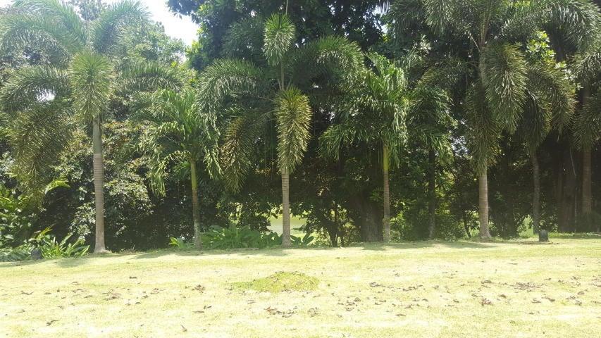 Casa Panama>Panama>Panama Pacifico - Alquiler:7.000 US Dollar - codigo: 17-4729
