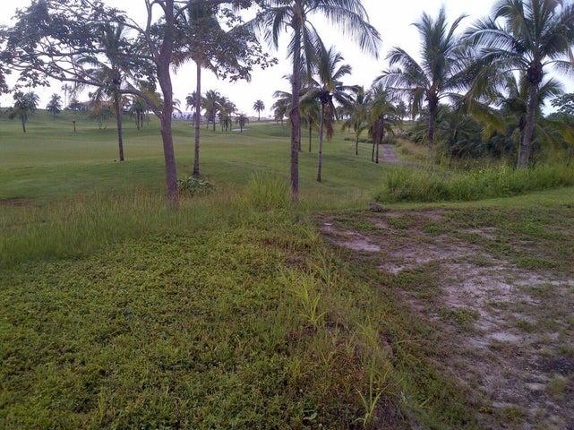 Terreno Panama>San Carlos>San Carlos - Venta:1.425.000 US Dollar - codigo: 17-4829
