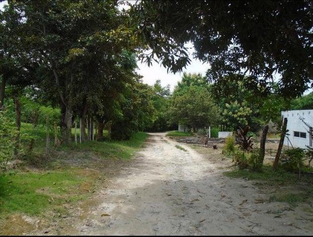 Terreno Panama>San Carlos>San Carlos - Venta:150.000 US Dollar - codigo: 17-5390