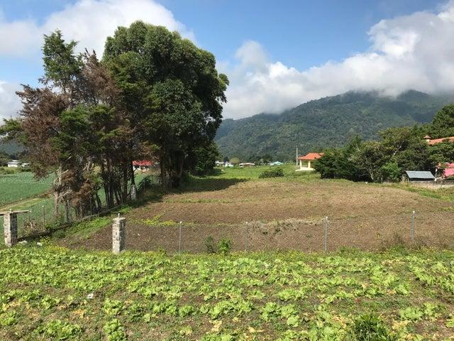 Terreno Chiriqui>Chiriqui>Chiriqui - Venta:88.400 US Dollar - codigo: 17-6081