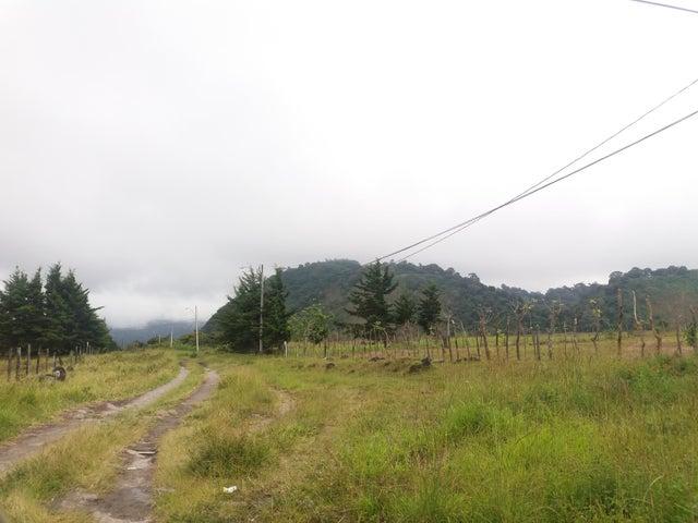Terreno Chiriqui>Chiriqui>Chiriqui - Venta:71.250 US Dollar - codigo: 17-6513