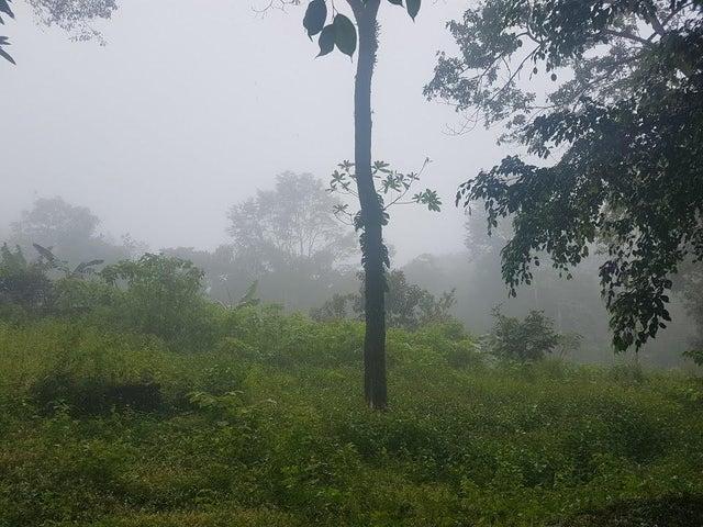 Terreno Panama>Pacora>Cerro Azul - Venta:58.000 US Dollar - codigo: 17-6968