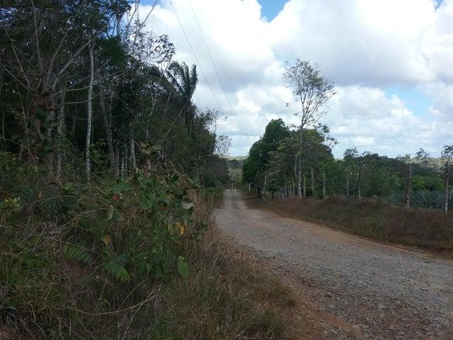 Terreno Panama>La chorrera>Chorrera - Venta:80.000 US Dollar - codigo: 18-1732