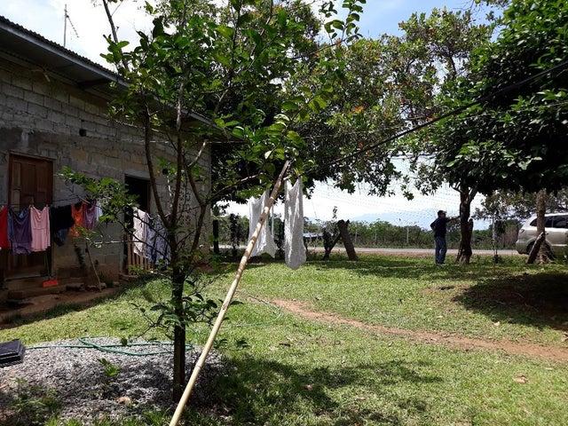 Terreno Chiriqui>David>David - Venta:48.000 US Dollar - codigo: 18-2297