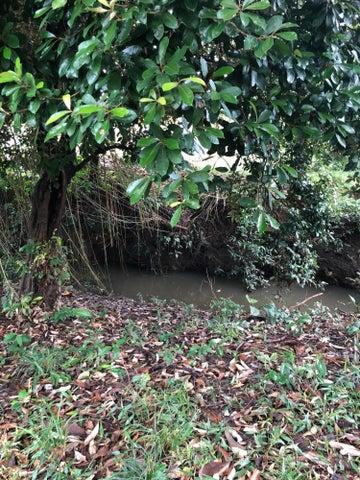 Terreno Panama>La chorrera>Chorrera - Venta:950.000 US Dollar - codigo: 18-3161