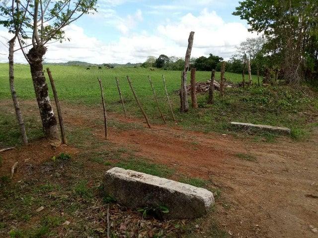Terreno Los Santos>Pedasi>Pedasi - Venta:300.000 US Dollar - codigo: 18-3589